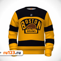 Свитшот Boston Bruins