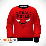 Свитшот Chicago Bulls Rose