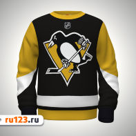 толстовка pittsburgh penguins
