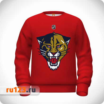 Свитшот Florida Panthers красный