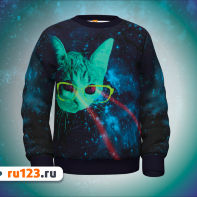 Толстовка Cats in space